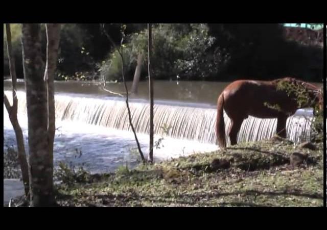 Tradição ID  »  Cavalgada do Minuano  »  Blc 2
