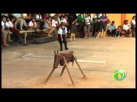 15º Rodeio Crioulo Nacional de Campeões  »  Vaca Parada 04  »  28.01