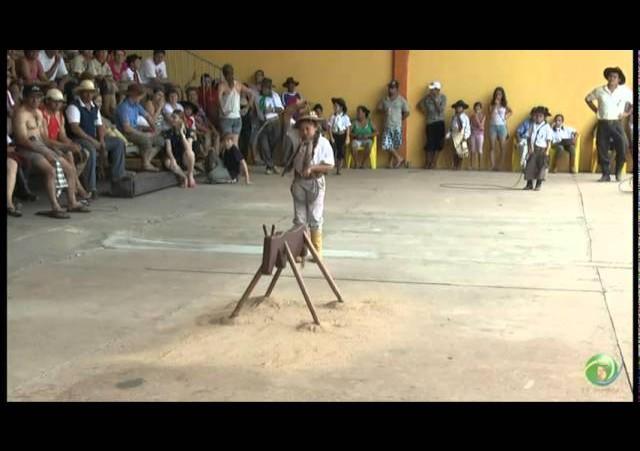 15º Rodeio Crioulo Nacional de Campeões  »  Vaca Parada 11  »  28.01