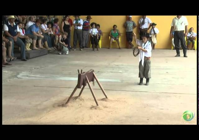 15º Rodeio Crioulo Nacional de Campeões  »  Vaca Parada 10  »  28.01