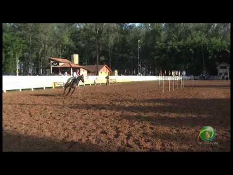 15º Rodeio Crioulo Nacional de Campeões  »  Prova de rédeas desafio  »  Feminina