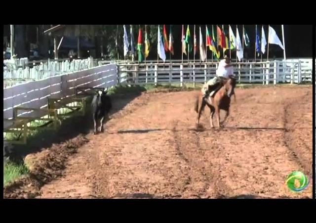 15º Rodeio Crioulo Nacional de Campeões  »  Laço Veterano  »  30.01 (domingo)