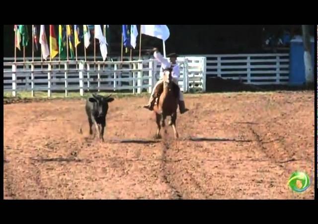 15º Rodeio Crioulo Nacional de Campeões  »  Laço Pai e Filho  »  30.01 (domingo)