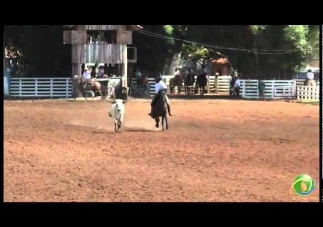 15º Rodeio Crioulo Nacional de Campeões: Braço de Ouro: dia 30.01 (domingo)