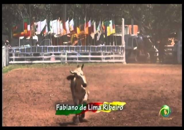 23ª Fecars »  Laço Diretor Campeiro »  16ª RT