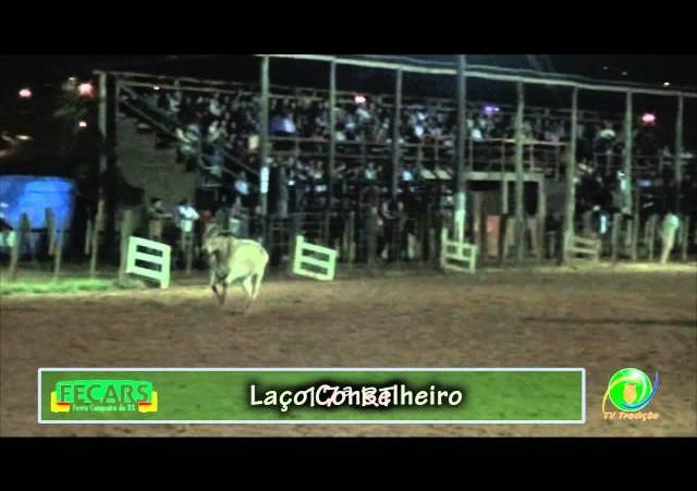 Fecars 2013 - Laço Conselheiro - 17ªRT