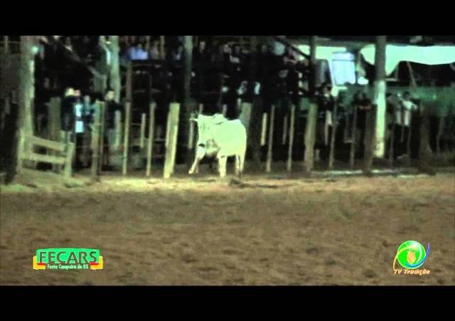 Fecars 2013 - Laço Conselheiro - 10ªRT