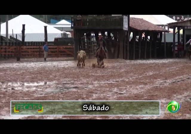 Fecars 2013 - Laço Patrão - 23ª RT - Sábado