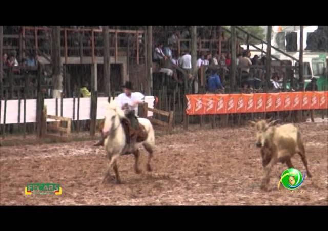 Fecars 2013 - Laço Piá/ Menina - 3ª RT - Sexta