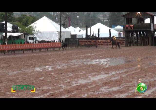 Fecars 2013 - Laço Coordenador Regional - 29ª RT - Sexta