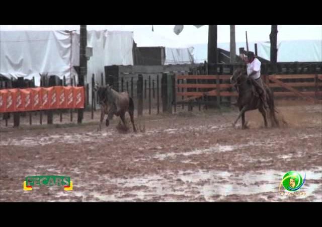 Fecars 2013 - Laço Coordenador Regional - 10ª RT - Sexta