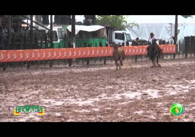 Fecars 2013 - Laço Coordenador Regional - 9ª RT - Sexta