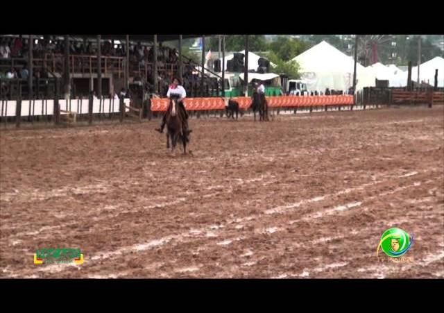 Fecars 2013 - Laço Guri/Guria - 7ª RT - Sexta