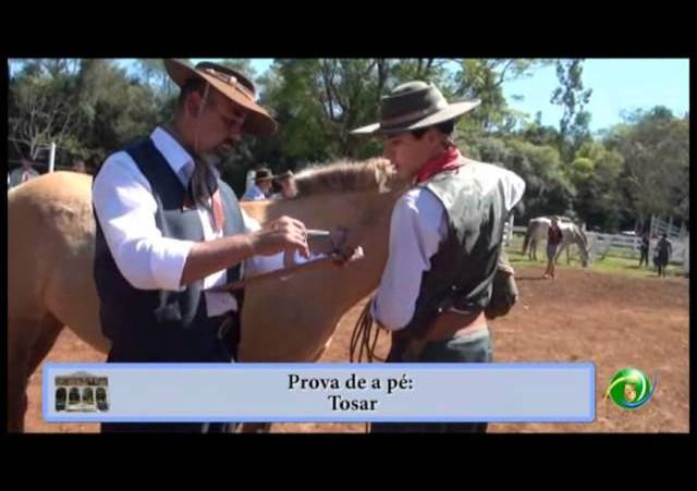 25ª Entrevero (Guri) -Gregório Correia Junior - 4ªRT - Campeira