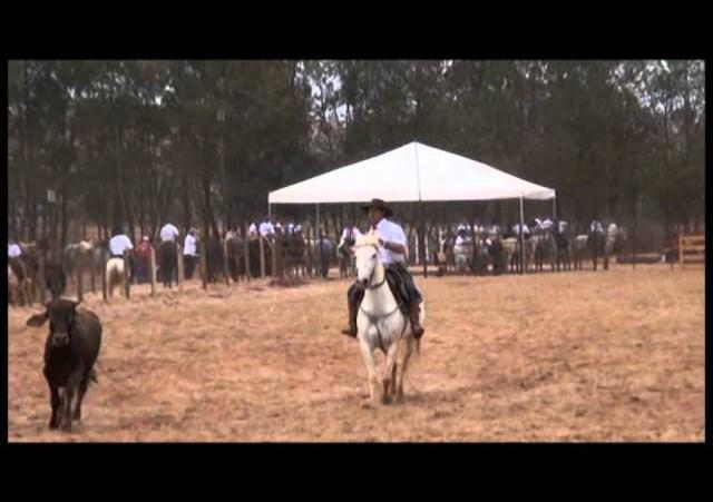 16º Rodeio Nacional - Laço Dupla Pai e Filho