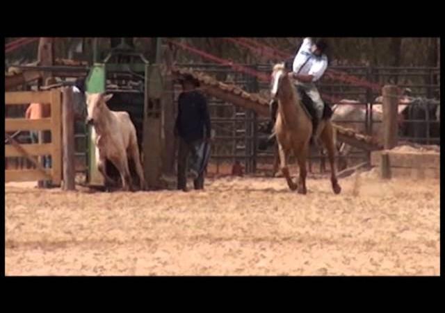 16º Rodeio Nacional - Laço Dupla de Rapaz