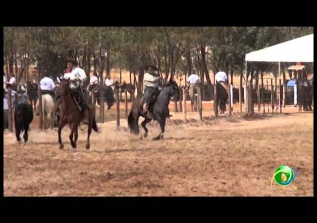 16º Rodeio Nacional - Laço Vaqueano