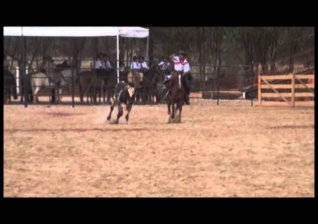 16º Rodeio Nacional - Equipe Rapaz