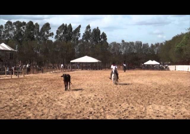 16º Rodeio de Campeões - Laço Pai e Filho