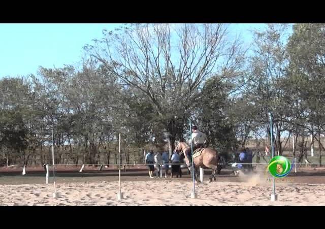 16º Rodeio Nacional de Campeões - Prova de Rédeas Cronômetro - Veterano