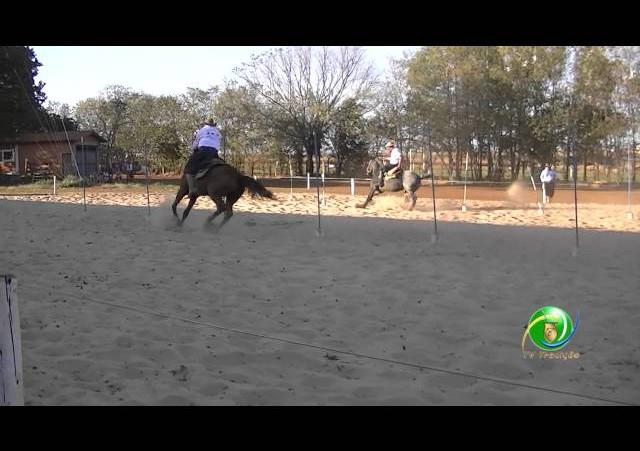16º Rodeio Nacional de Campeões - Prova de Rédeas Desafio - Veterano