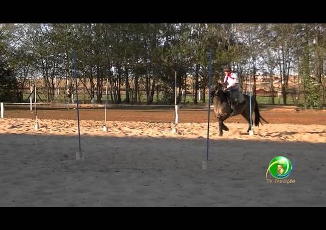 16º Rodeio Nacional de Campeões - Prova de Rédeas Desafio - Vaqueano