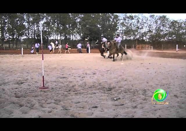 16º Rodeio Nacional de Campeões - Prova de Rédeas Desafio - Prenda Adulta