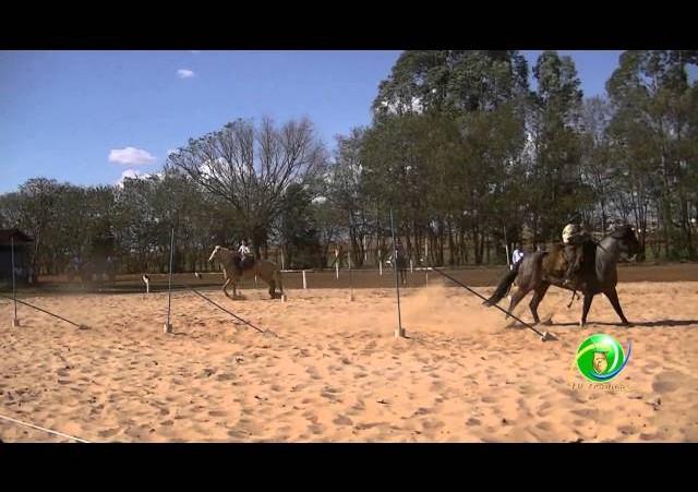 16º Rodeio Nacional de Campeões - Prova de Rédeas Desafio - Piá