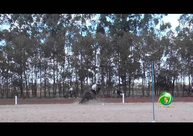 16º Rodeio Nacional de Campeões - Prova de Rédeas Cronômetro - Guri