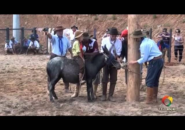 XXIV Rodeio Estadual de Paraí - Gineteada