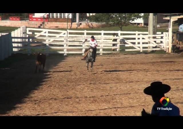 20º Rodeio do Conesul - Classificação Laço Certeiro - Quinta Feira