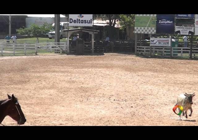 20º Rodeio do Conesul - Laço Comprido - Quinta Feira