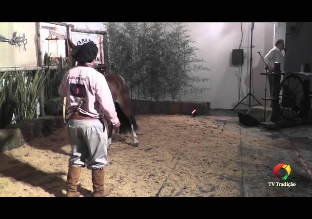 Rodeio Conesul 2014 -  9º Leilão Laço Certeiro - lote 14