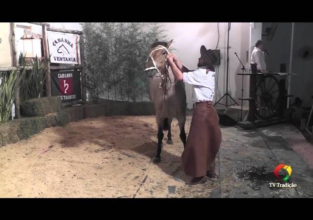 Rodeio Conesul 2014 -  9º Leilão Laço Certeiro - lote 05