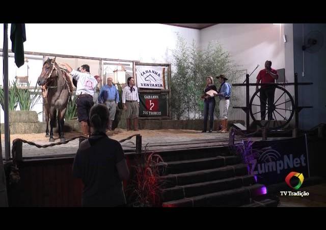 Rodeio conesul 2014 - 9º Leilão Laço Certeiro - Abertura e premiação