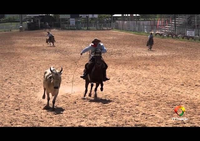 20º Rodeio Internacional do Conesul - Laço Equipe - 1ª Volta - Sexta-Feira