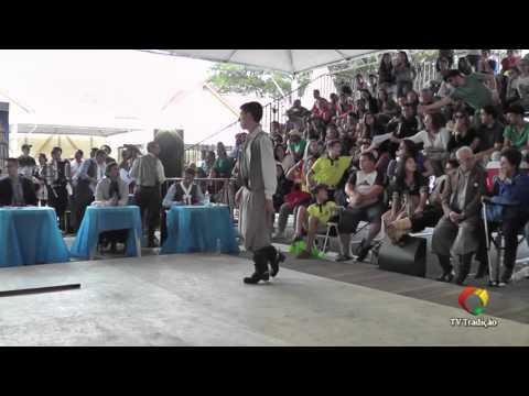 ENART 2015 - Bruno de Assis X Clademir Santos - Chula