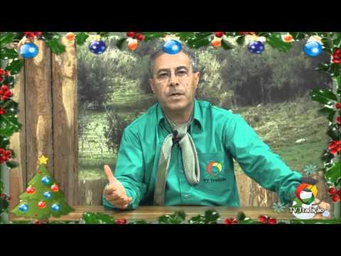 Mensagem de Natal - Elomir Malta
