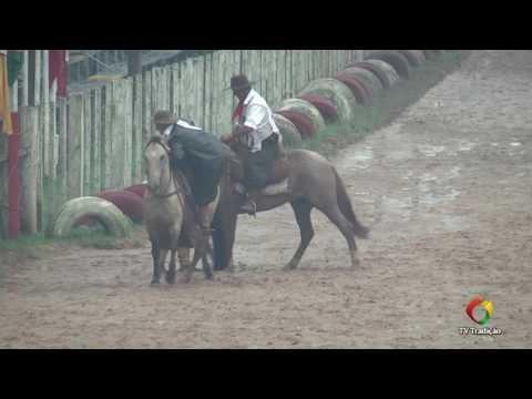 23º Rodeio Internacional do Conesul - Laço Veterano