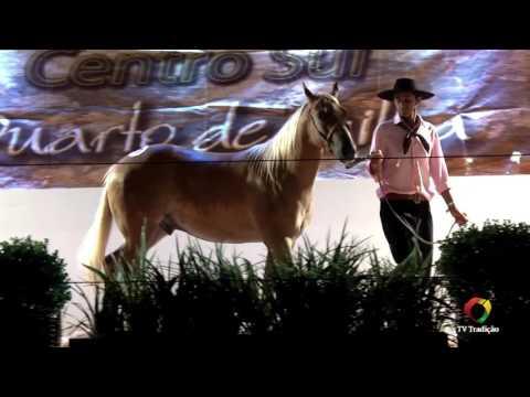 23º Rodeio Internacional do Conesul - Leilão Centro Sul