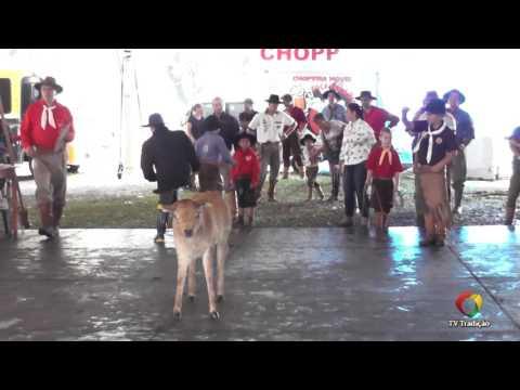 23º Rodeio Internacional do Conesul - Vaca Parada