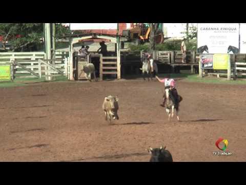 23º Rodeio Internacional do Conesul - Laço Criador - Quinta-feira