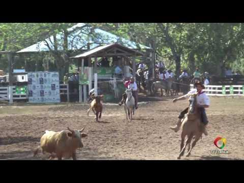 Laço Seleção (5ª volta e final) - 29ª FECARS - Domingo