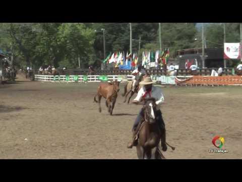 Individual Equipes - 29ª FECARS - Domingo